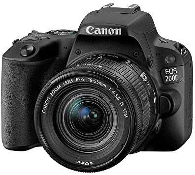 Canon EOS Rebel SL2, a great choice for dental photography