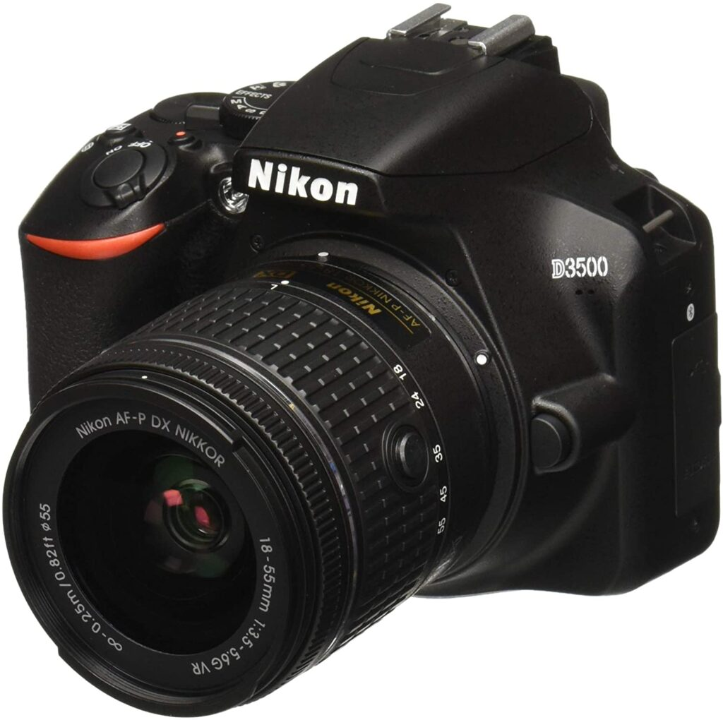 Nikon D3500, a solid choice for taking photos of your favourite pet