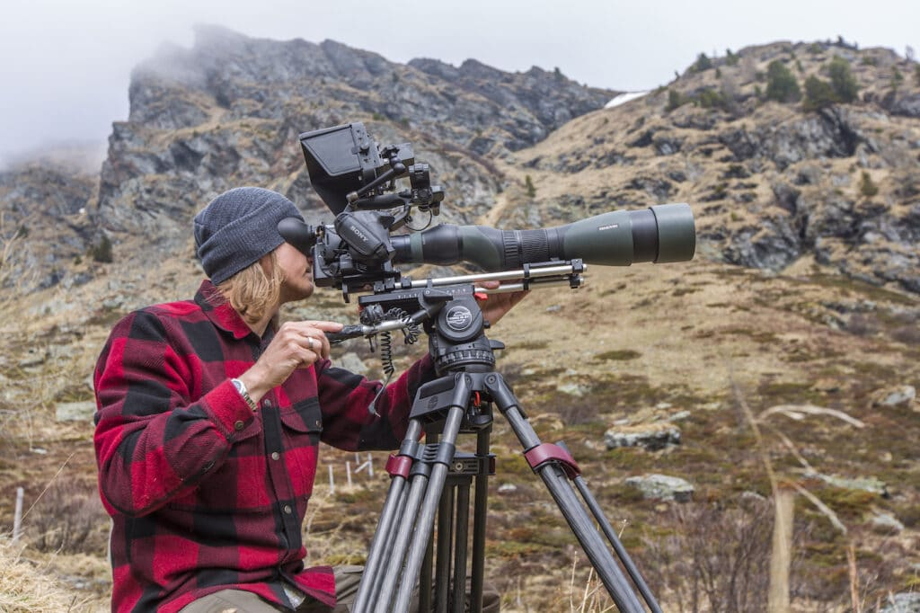 Article about best camera for Swarovski digiscoping.