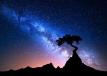 5 Best Canon lenses for Night Sky photography – Astrophotography – A Complete Guide